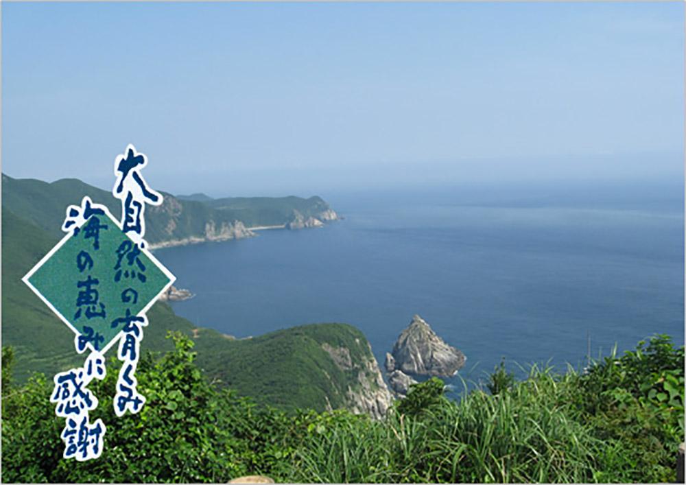 真鯛 五島列島 [長崎県五島市]